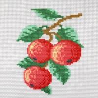 """Канва с нанесенным рисунком """"Яблоки"""""""