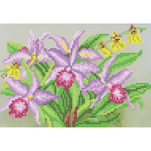 """Схема для вышивки бисером """"Орхидеи"""""""